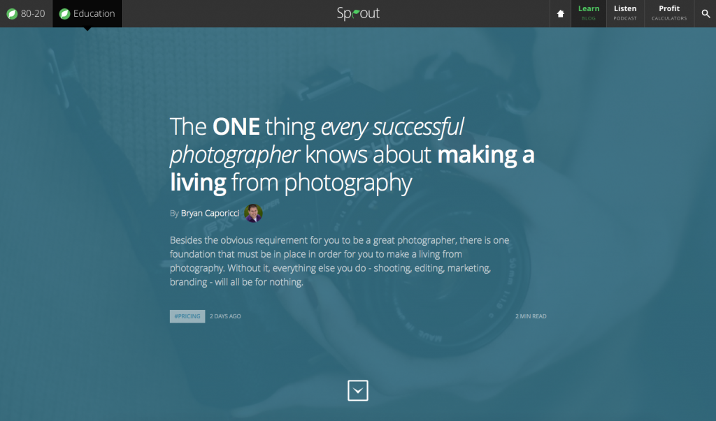 Sprouting Photographer WordPress Article Design