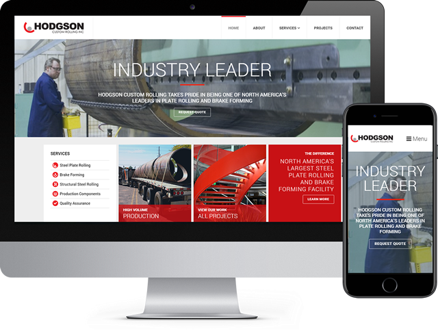 vxfusion niagara web design
